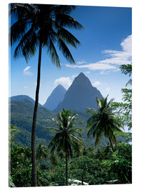 Acrylic print  The Pitons, St Lucia - John Miller