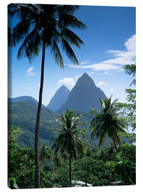 Canvas print  The Pitons, St Lucia - John Miller