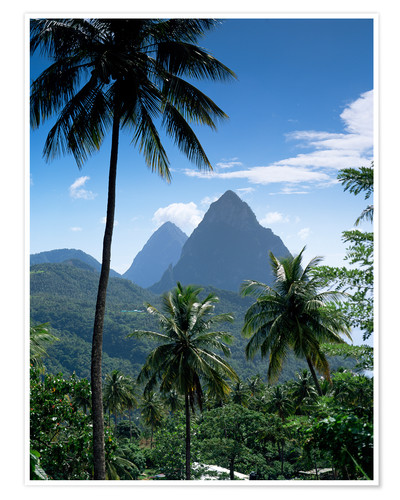 Premium poster The Pitons, St Lucia