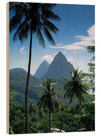 Wood print  The Pitons, St Lucia - John Miller