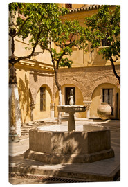 Canvas print  Terrace with fountain in Seville - Guy Thouvenin