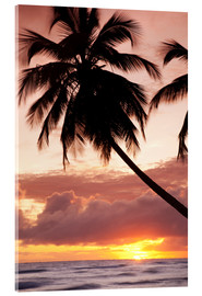 Acrylic glass  Tropical sunset in Barbados, Caribbean - Angelo Cavalli