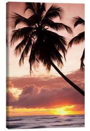 Canvas  Tropical sunset in Barbados, Caribbean - Angelo Cavalli