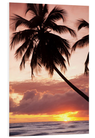 Foam board print  Tropical sunset in Barbados, Caribbean - Angelo Cavalli