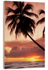 Wood  Tropical sunset in Barbados, Caribbean - Angelo Cavalli
