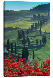 Canvas print  Winding road and poppies, Montichiello, Tuscany, Italy, Europe - Angelo Cavalli