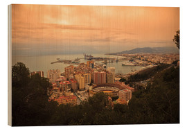 Wood  High angle view of Malaga cityscape with bullring and docks - Ian Egner