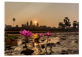 Michael Nolan - Sunrise over the west entrance to Angkor Wat, Angkor, UNESCO World Heritage Site, Siem Reap, Cambodi