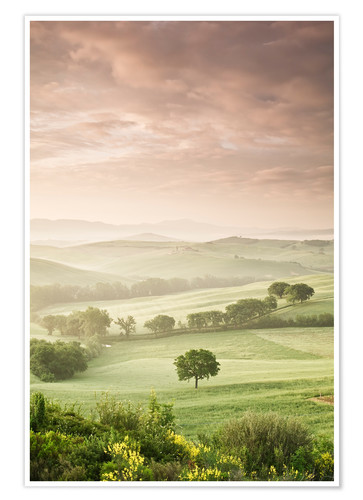 Premium poster Sunrise in the province of Siena, Tuscany