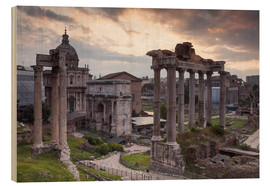 Wood  Roman Forum (Foro Romano) - Julian Elliott