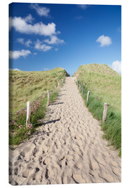 Canvas print  Path through dunes, Sylt, North Frisian Islands,Nordfriesland, Schleswig Holstein, Germany - Markus Lange