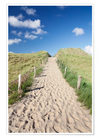 Premium poster  Path through dunes, Sylt, North Frisian Islands,Nordfriesland, Schleswig Holstein, Germany - Markus Lange