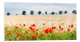 Foam board print  Poppies on the sidelines - Matthew Williams-Ellis