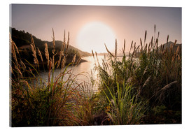 Acrylic print  Reeds and setting sun at the shore of Qiandao Lake - Andreas Brandl