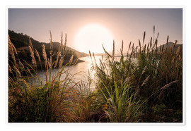 Premium poster Reeds and setting sun at the shore of Qiandao Lake