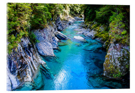 Acrylic print  The stunning Blue Pools, Haast Pass, South Island, New Zealand - Michael Runkel