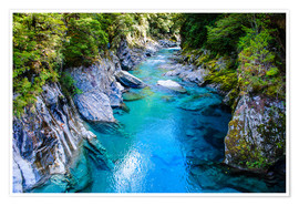 Premium poster  The stunning Blue Pools, Haast Pass, South Island, New Zealand - Michael Runkel