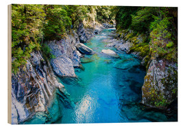 Wood print  The stunning Blue Pools, Haast Pass, South Island, New Zealand - Michael Runkel