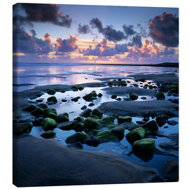 Canvas print  Sunset over rock pool, Strandhill, County Sligo, Connacht, Republic of Ireland, Europe - Stuart Black