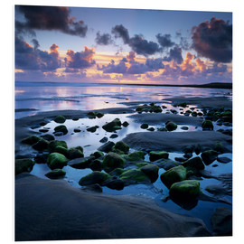 Foam board print  Sunset over rock pool, Strandhill, County Sligo, Connacht, Republic of Ireland, Europe - Stuart Black