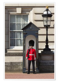 Premium poster  Grenadier Guardsman outside Buckingham Palace, London, England, United Kingdom, Europe - Stuart Black