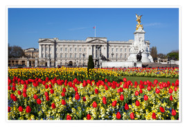 Premium poster  Buckingham Palace and Queen Victoria Monument with tulips, London, England, United Kingdom, Europe - Stuart Black