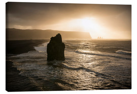Canvas print  Dyrholaey, Iceland, Polar Regions