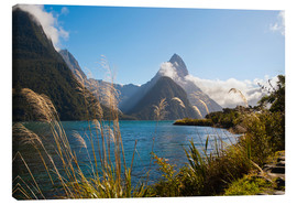 Canvas  Mitre Peak, Milford Sound - Matthew Williams-Ellis