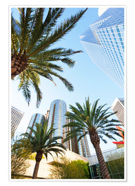 Premium poster  Palm trees in Los Angeles - Gavin Hellier