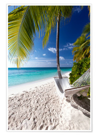 Premium poster Hammock on tropical beach