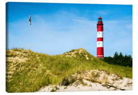 Canvas print  Amrum Lighthouse - Reiner Würz