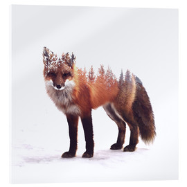 Acrylic print  Fox - Peg Essert