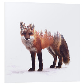 Foam board print  Fox - Peg Essert