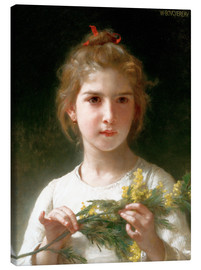 Canvas print  The flowering mimosa - William Adolphe Bouguereau