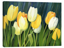 Canvas print  Tulips - Franz Heigl