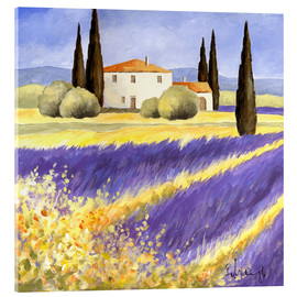 Acrylic glass  Light of Provence - Franz Heigl