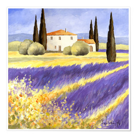 Premium poster Light of Provence