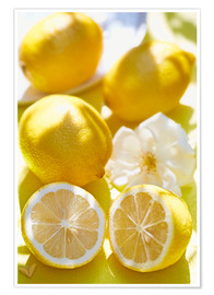 Premium poster  Lemon Kick - K&L Food Style