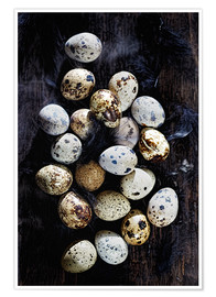 Poster Quail eggs on Ebony
