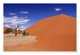 Poster Dunes of the Namib, Namibia