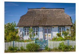 Foam board print  Thatched cottage on the Baltic Sea - Christian Müringer