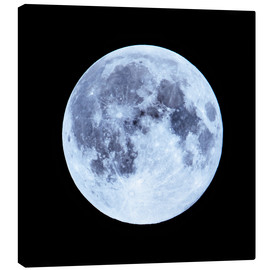 Canvas print  Blue Full Moon - Michael Haußmann