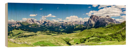 Wood  Seiser Alm panoramic view, South Tyrol - Sascha Kilmer