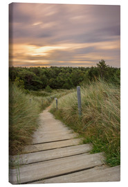 Canvas print  Dune ridge on the North Sea - Dennis Stracke