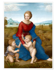 Premium poster  Madonna in the meadow - Raffael