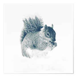Premium poster  squirrel - Peg Essert