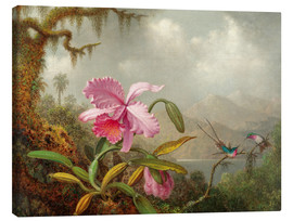 Canvas  Cattleya Orchid and Three Brazilian Hummingbirds - Martin Johnson Heade