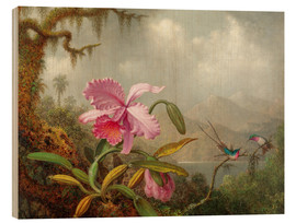 Wood print  Cattleya Orchid and three Brazilian hummingbirds - Martin Johnson Heade