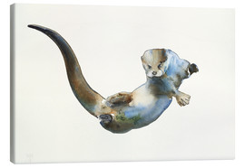Canvas print  Floating Otter - Mark Adlington