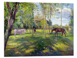 Foam board print  Horse paddock - Timothy Easton